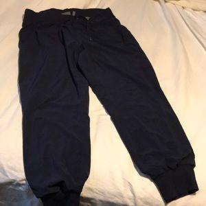 Athleta jogger pants, lined.